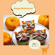 #Japanese-#Pocky-#giveaway-#cat-#cupcakes.